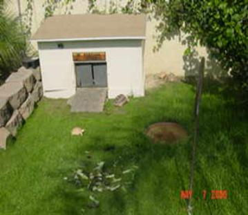 summary of outdoor housing requirements converted dog house or custom